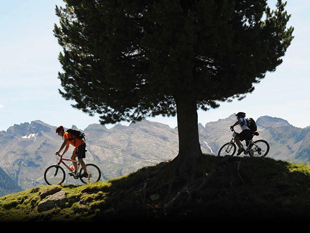 Apiro Bicicletta