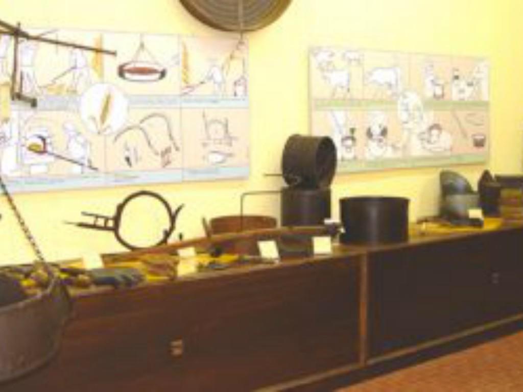 museo_territorio_sanseverino